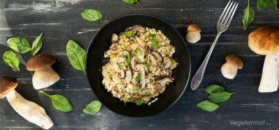 Porcini risotto – vegetaroppskrift