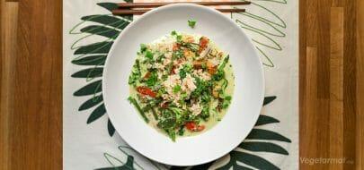 Grønn wok med kokosmelk – vegetaroppskrift